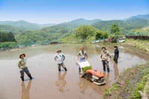福岡の農業